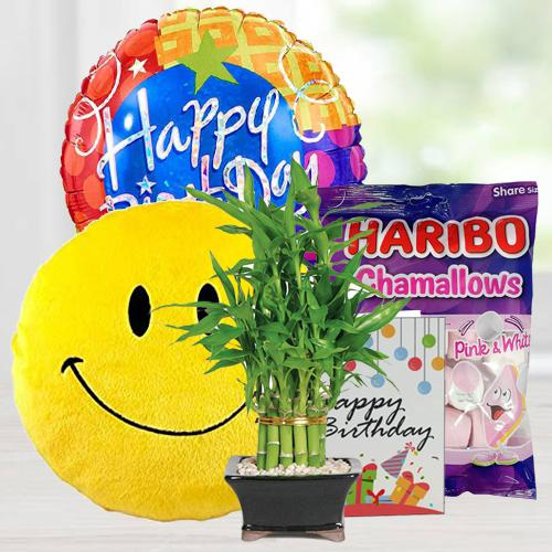 Remarkable Assortments Gift Combo