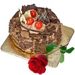 Tasty Chocolate Cake N Red Rose