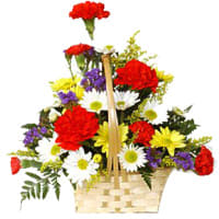 Luxurious Natural Beauty of Mixed Gerberas and Carnations Arrangement