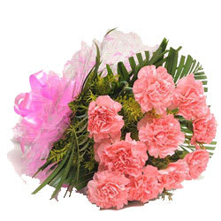 Elegant Bunch of Pink Carnations