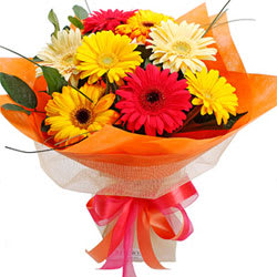 Magnificent Mix N Match Ten Gerberas Arrangement