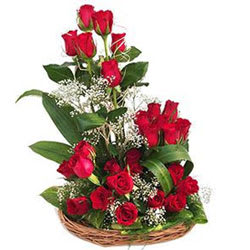 Cheerful Collection of 25 Dutch Red Roses in a Basket