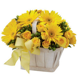 Remarkable Basket of Yellow Roses N Gerberas