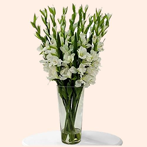 Mesmerizing White Gladiolus in a Glass Vase