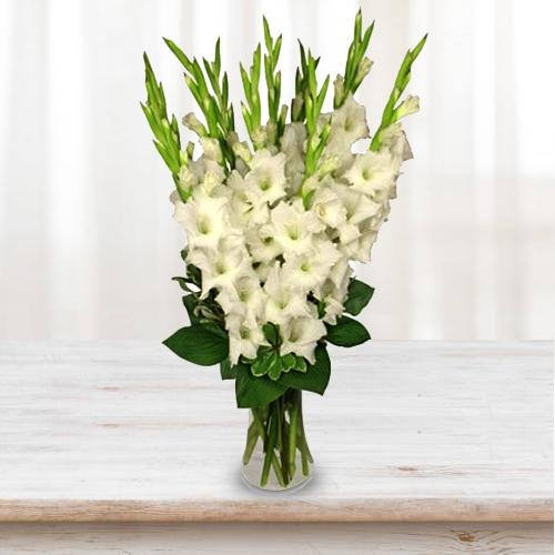 Artistic Display of White Gladiolus in a Glass Vase