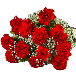 Attractive Bouquet of Red Carnations