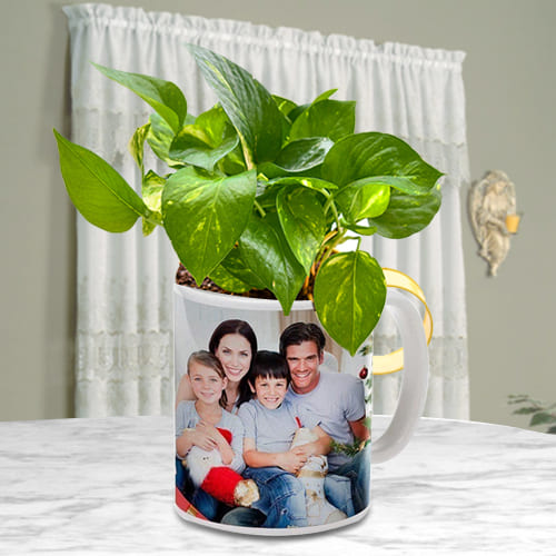 Good Fortune Money Plant in a Personalized Coffee Mug<br>