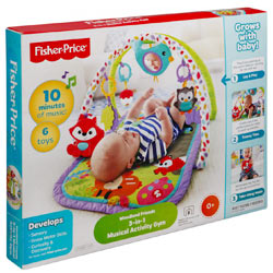 Amazing Fisher Price 3-in-1 Musical Activity Gym